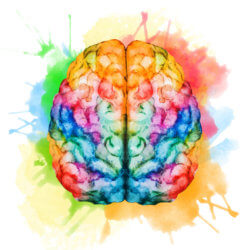 10 Cool Things About the Brain and What It Means For You